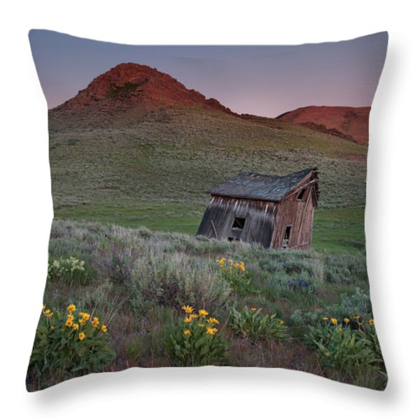 Leaning Shed Throw Pillow by Leland D Howard