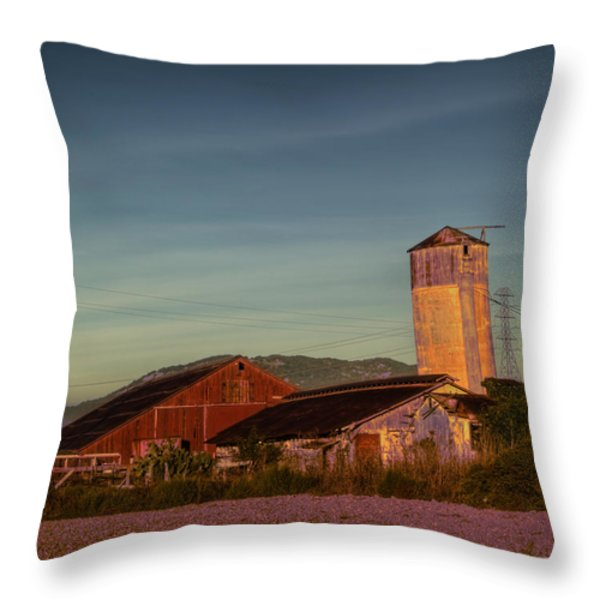 Leaning Silo  Throw Pillow by Bill Gallagher