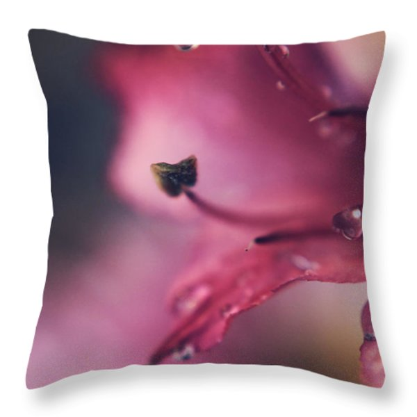 Learn to Love Again Throw Pillow by Laurie Search