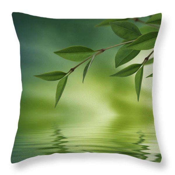Leaves reflecting in water Throw Pillow by Aged Pixel
