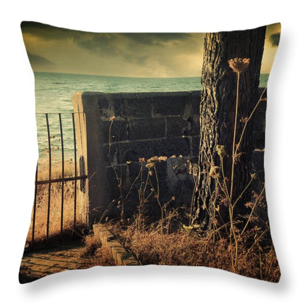 Leaving Home Throw Pillow by Taylan Soyturk