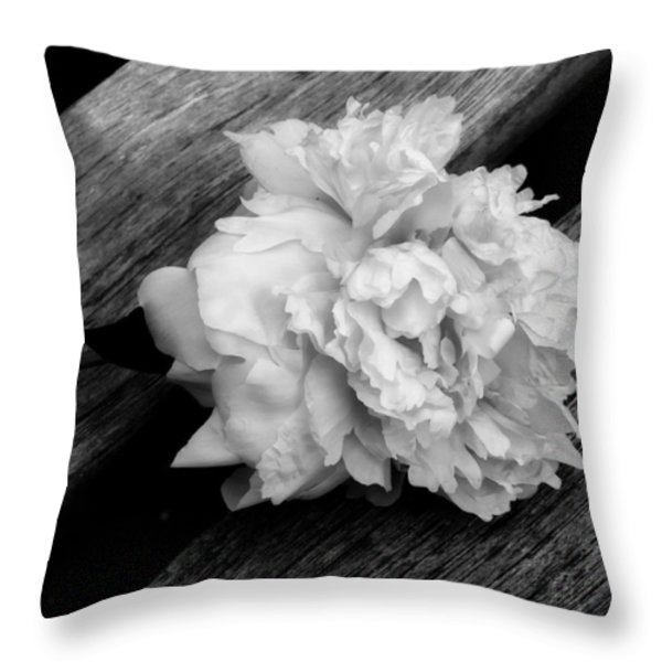 Left Behind Throw Pillow by Lucinda Walter