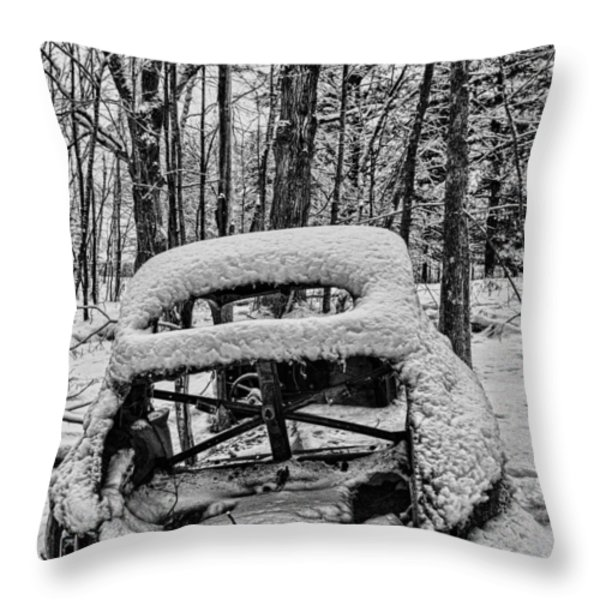 Left To Rust Throw Pillow by Paul Freidlund