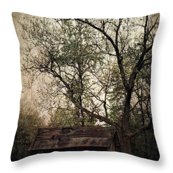 Left Untouched Throw Pillow by Dale Kincaid