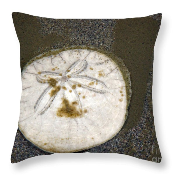 Legend Of The Sand Dollar Throw Pillow by Beverly Guilliams