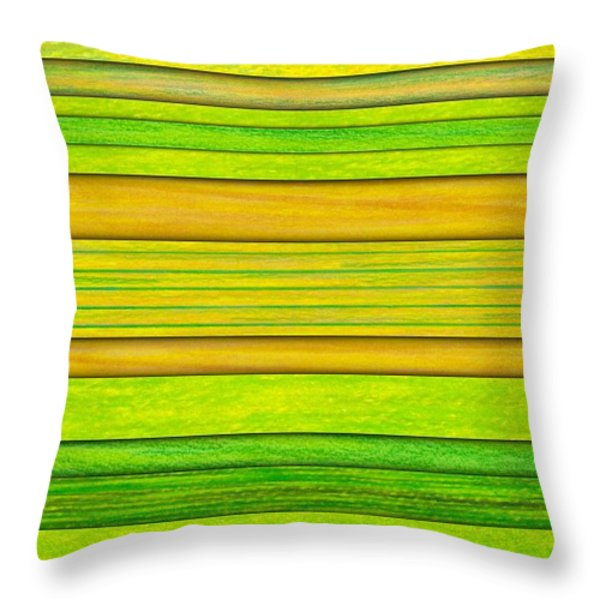 Lemon Limeade Throw Pillow by David K Small