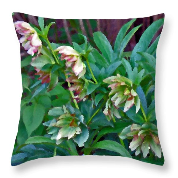 Lenten Roses Throw Pillow by Jean Hall