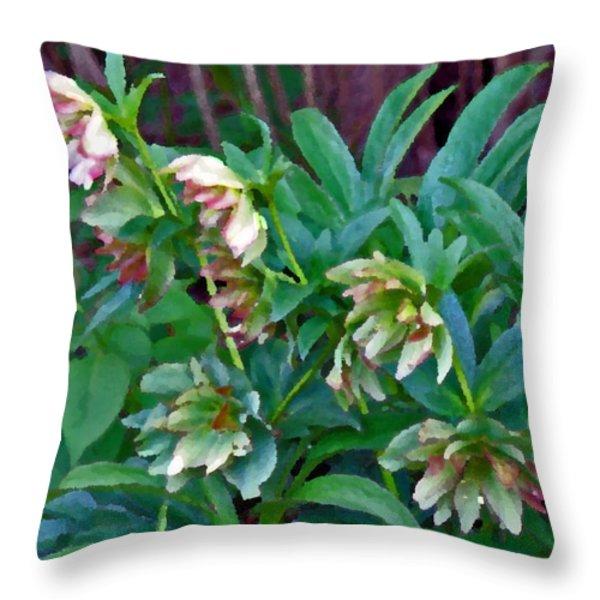 Lenten Roses Throw Pillow by Jean Hall