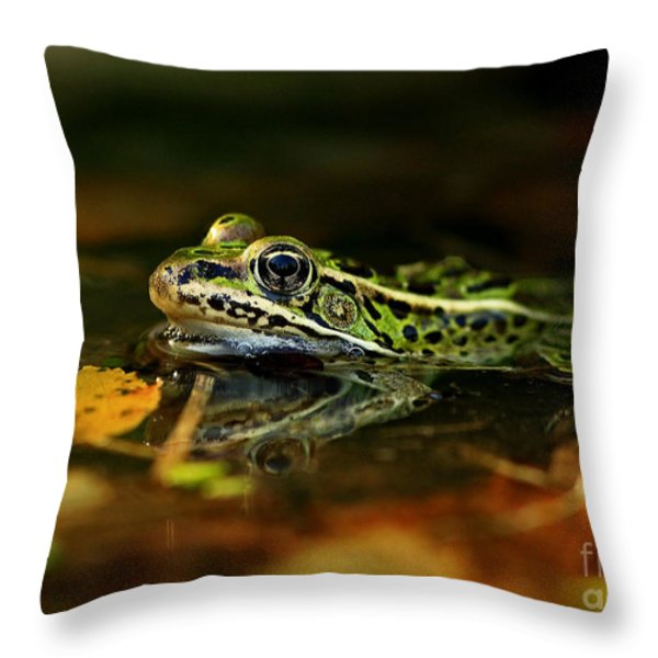 Leopard Frog Floating on Autumn Leaves Throw Pillow by Inspired Nature Photography By Shelley Myke