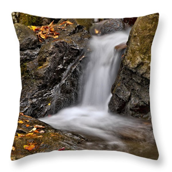 Lepetit Waterfall Throw Pillow by Susan Candelario