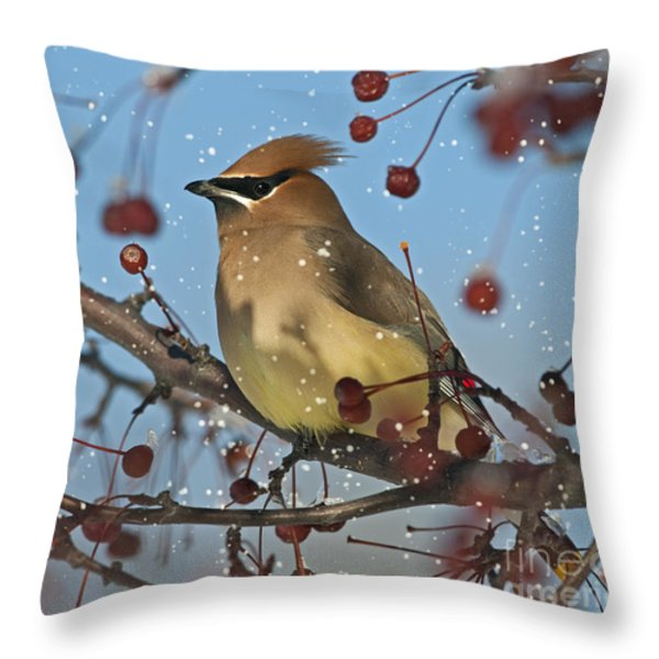 Let it snow Let it snow Let it... Throw Pillow by Nina Stavlund