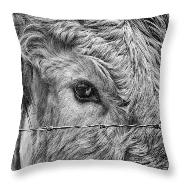 Let Me Go Free Throw Pillow by John Farnan