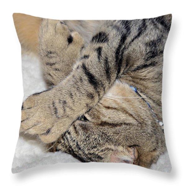 Let Me Sleep Throw Pillow by Susan Leggett