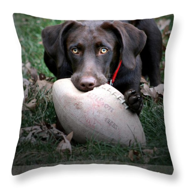 Let's Play Football Throw Pillow by Lori Deiter
