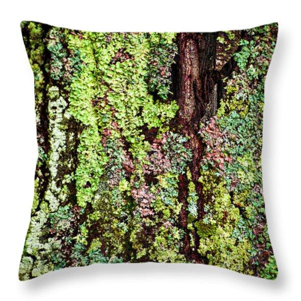 Lichen Throw Pillow by Elena Elisseeva