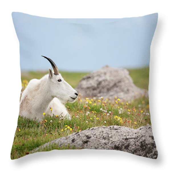 Lie Down In Green Pastures Throw Pillow by Jim Garrison