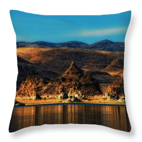 Life On Mars Throw Pillow by Donna Blackhall