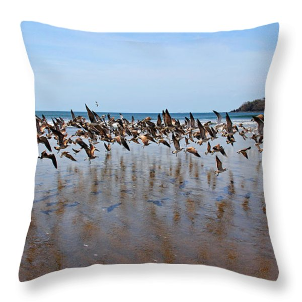 Lift Off Throw Pillow by Bob Hislop