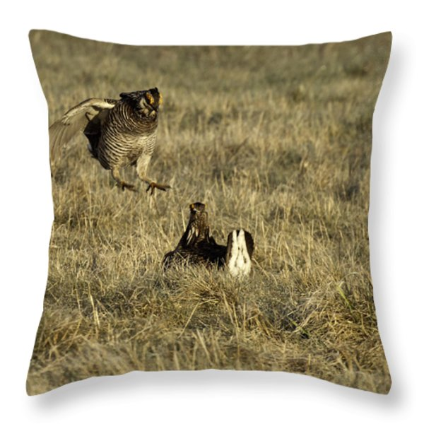 Lift Off Throw Pillow by Thomas Young