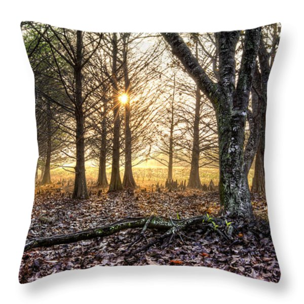 Light in the Trees Throw Pillow by Debra and Dave Vanderlaan