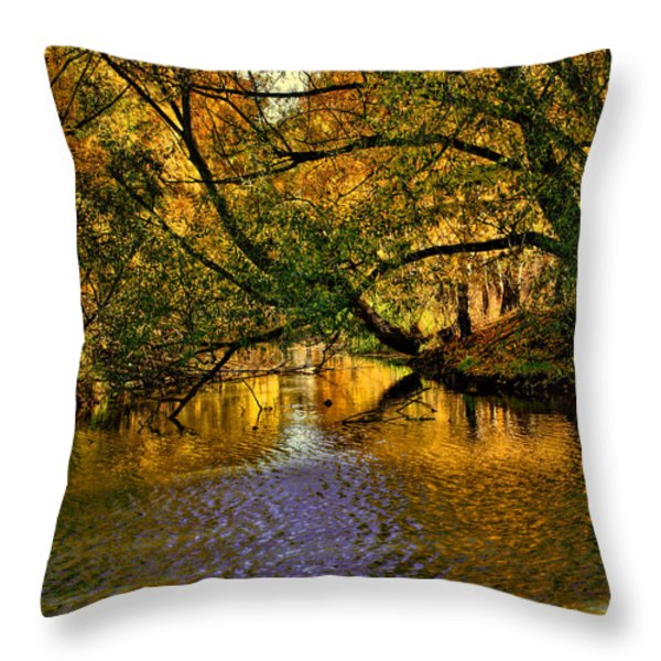 Light In The Trees Throw Pillow by Leif Sohlman