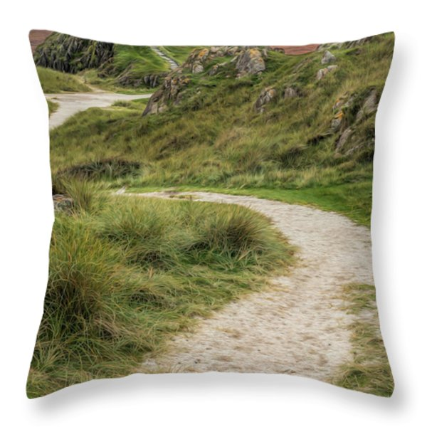 Lighthouse Trail Throw Pillow by Adrian Evans