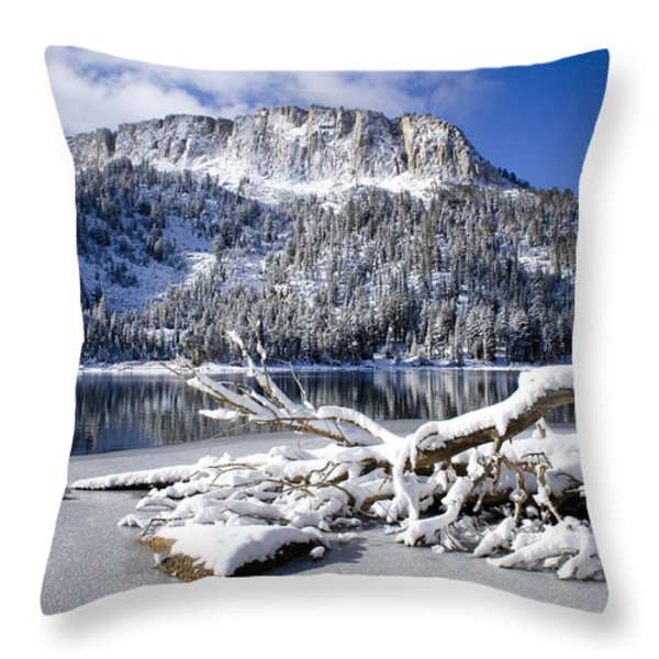 Lightly Powdered Throw Pillow by Chris Brannen