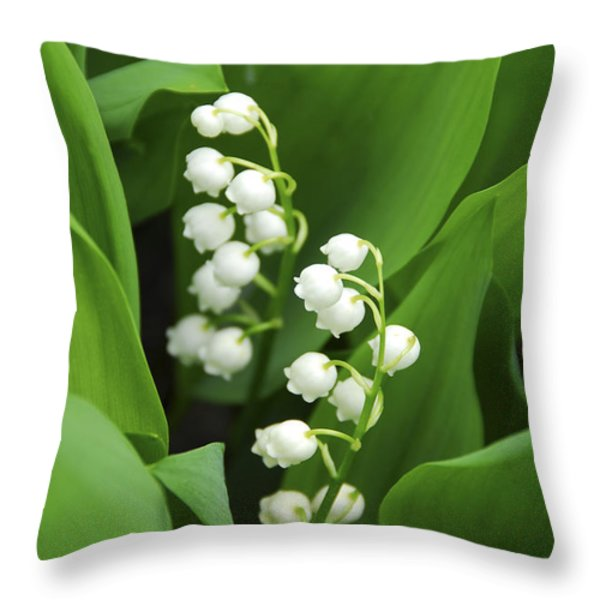 Lily-of-the-valley  Throw Pillow by Elena Elisseeva