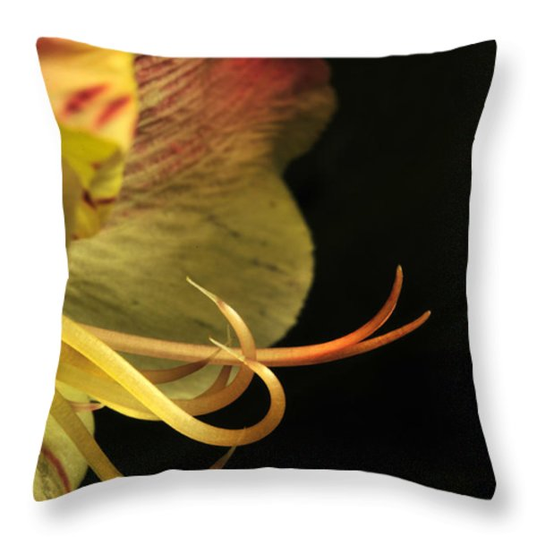 Lily Stamens Throw Pillow by Karen Slagle