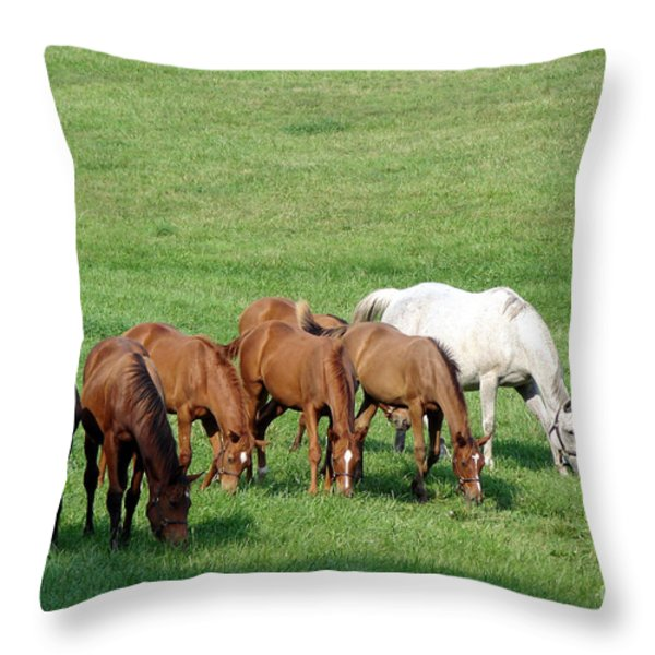 Line Feeding Throw Pillow by Olivier Le Queinec