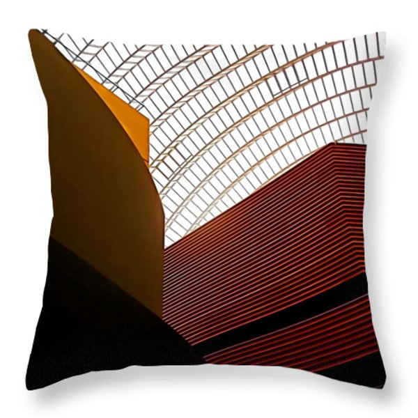 Lines and Light Throw Pillow by Rona Black
