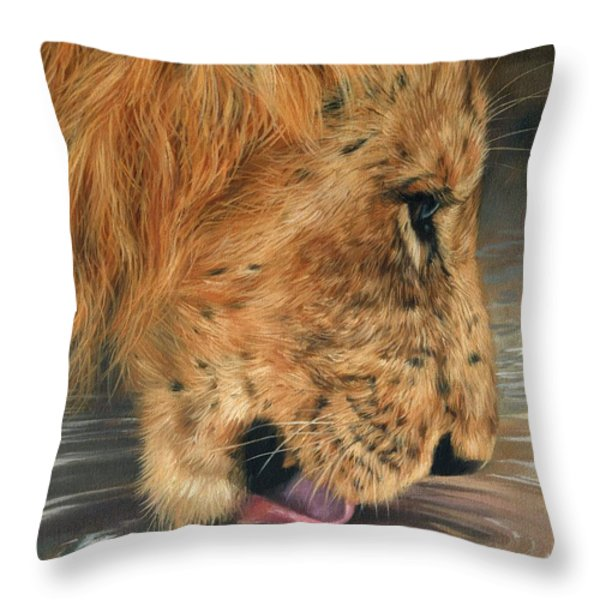 Lion Drinking Throw Pillow by David Stribbling