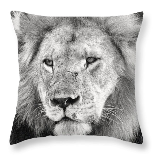 Lion King Throw Pillow by Adam Romanowicz