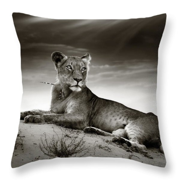Lioness On Desert Dune Throw Pillow by Johan Swanepoel