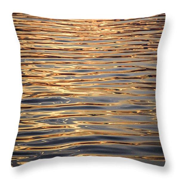 Liquid Gold Throw Pillow by Elena Elisseeva