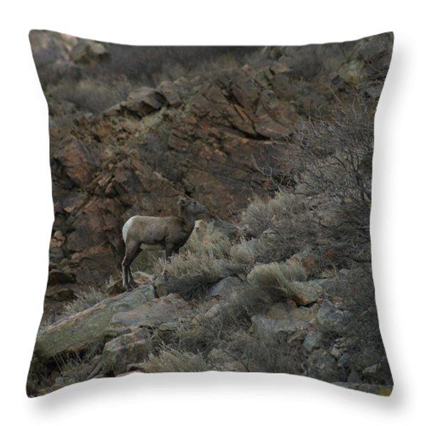 Little Bighorn Throw Pillow by Ernie Echols