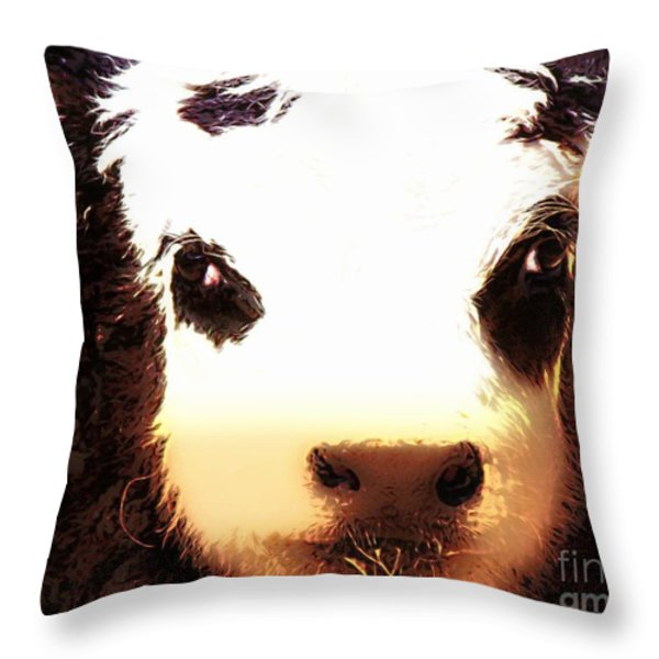 Little Black Baldy Throw Pillow by Barbara Chichester