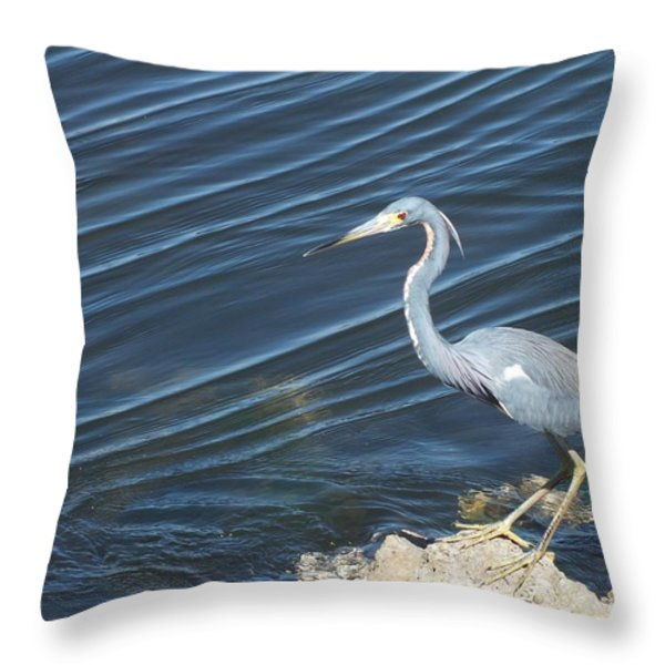 Little Blue Heron II Throw Pillow by Anna Villarreal Garbis