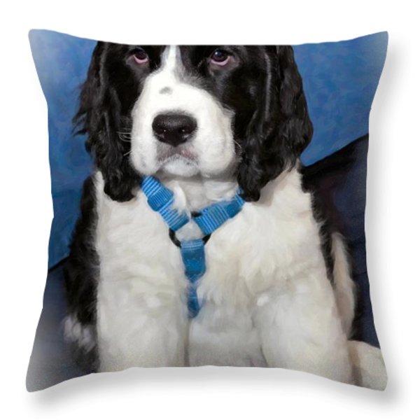 Little Boy Blue Oil Throw Pillow by Steve Harrington