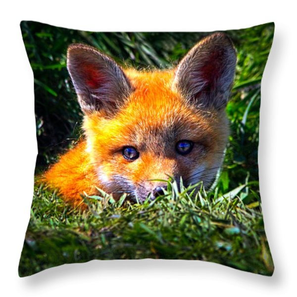 Little Red Fox Throw Pillow by Bob Orsillo