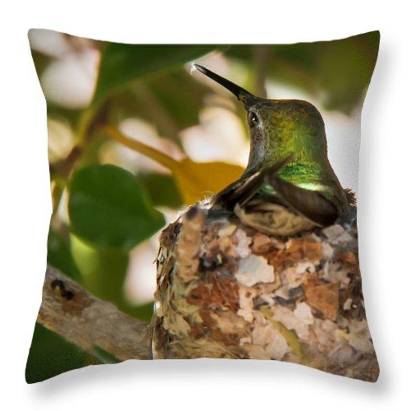 Little Reparing Throw Pillow by Robert Bales