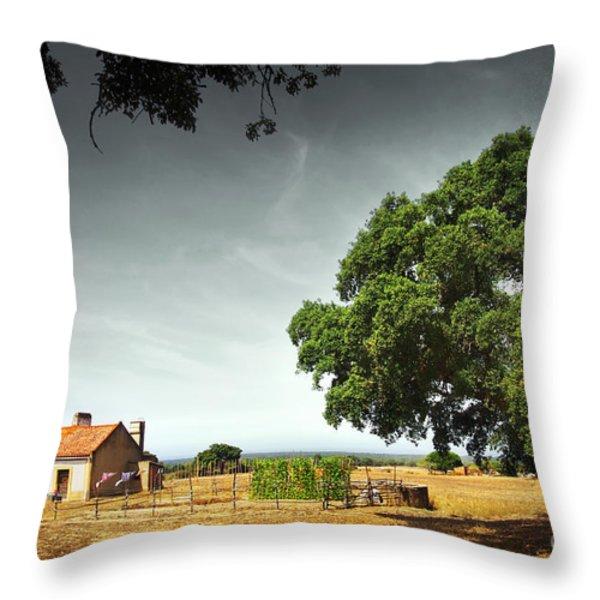 Little Rural House Throw Pillow by Carlos Caetano