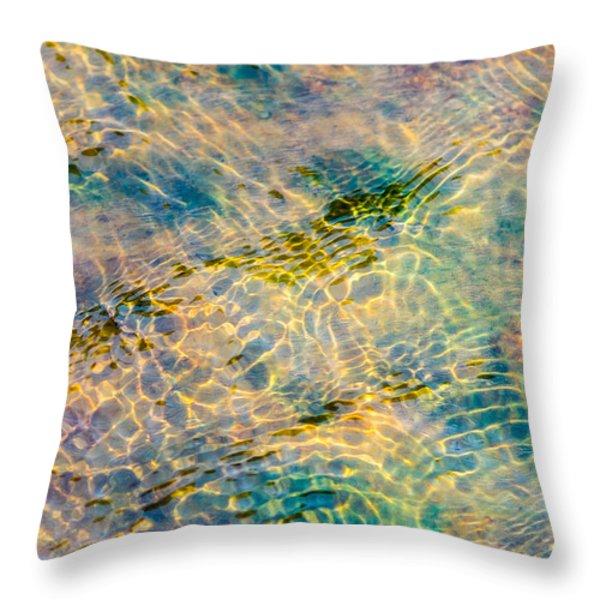 Live Water - Featured 2 Throw Pillow by Alexander Senin