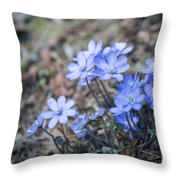 liverleaf II Throw Pillow by Hannes Cmarits