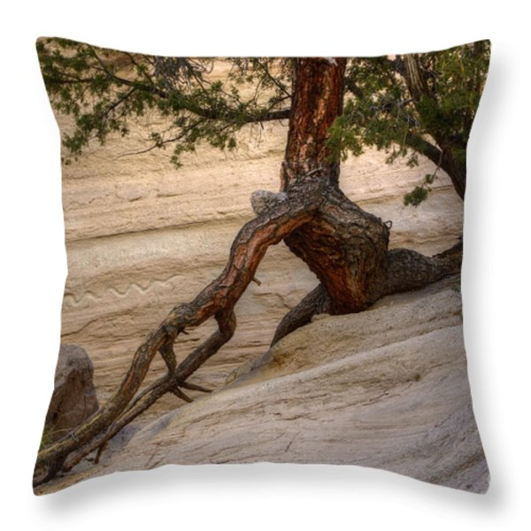 Living Gracefully Throw Pillow by Bob Christopher