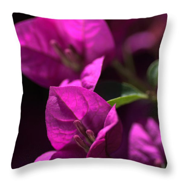 Living With Bougainvillea Throw Pillow by Joy Watson