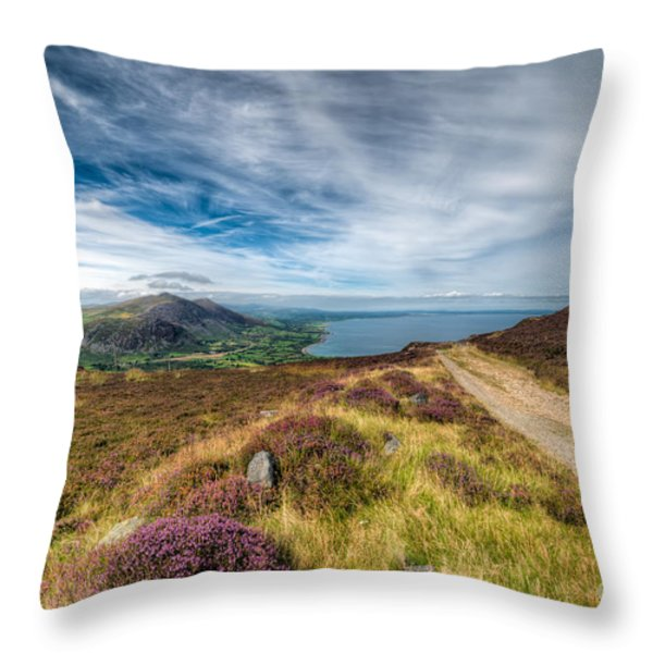 Llyn Peninsula Throw Pillow by Adrian Evans