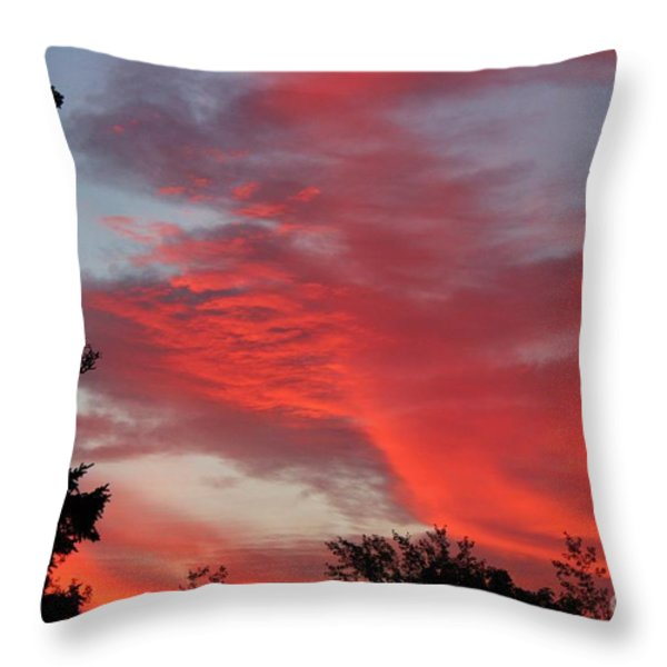 Lobster Sky Throw Pillow by Barbara Griffin