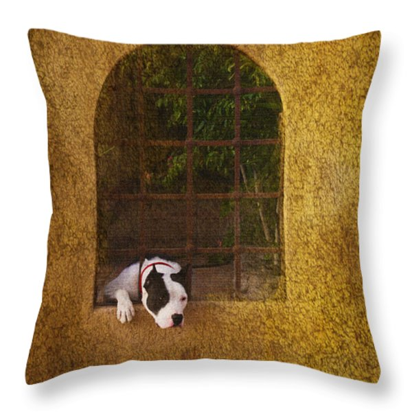 Lock Down Throw Pillow by Kandy Hurley