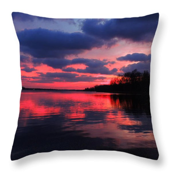Locust Sunset Throw Pillow by Raymond Salani III